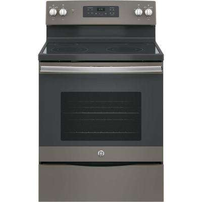 30 in. 5.3 cu. ft. Electric Range with Self-Cleaning Oven in Slate, Fingerprint Resistant