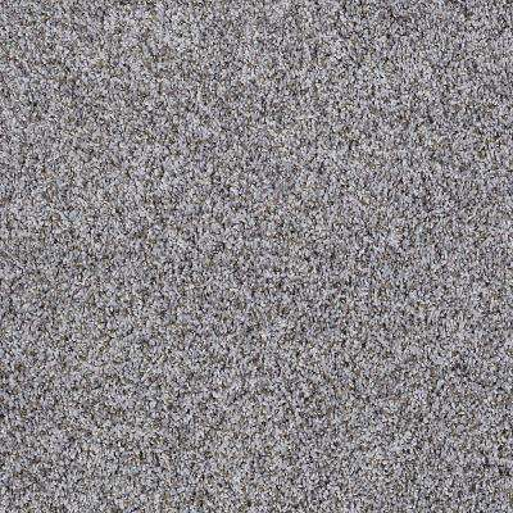 Carpet Sample - Eden Cove - In Color Aluminum 8 in. x 8 in.