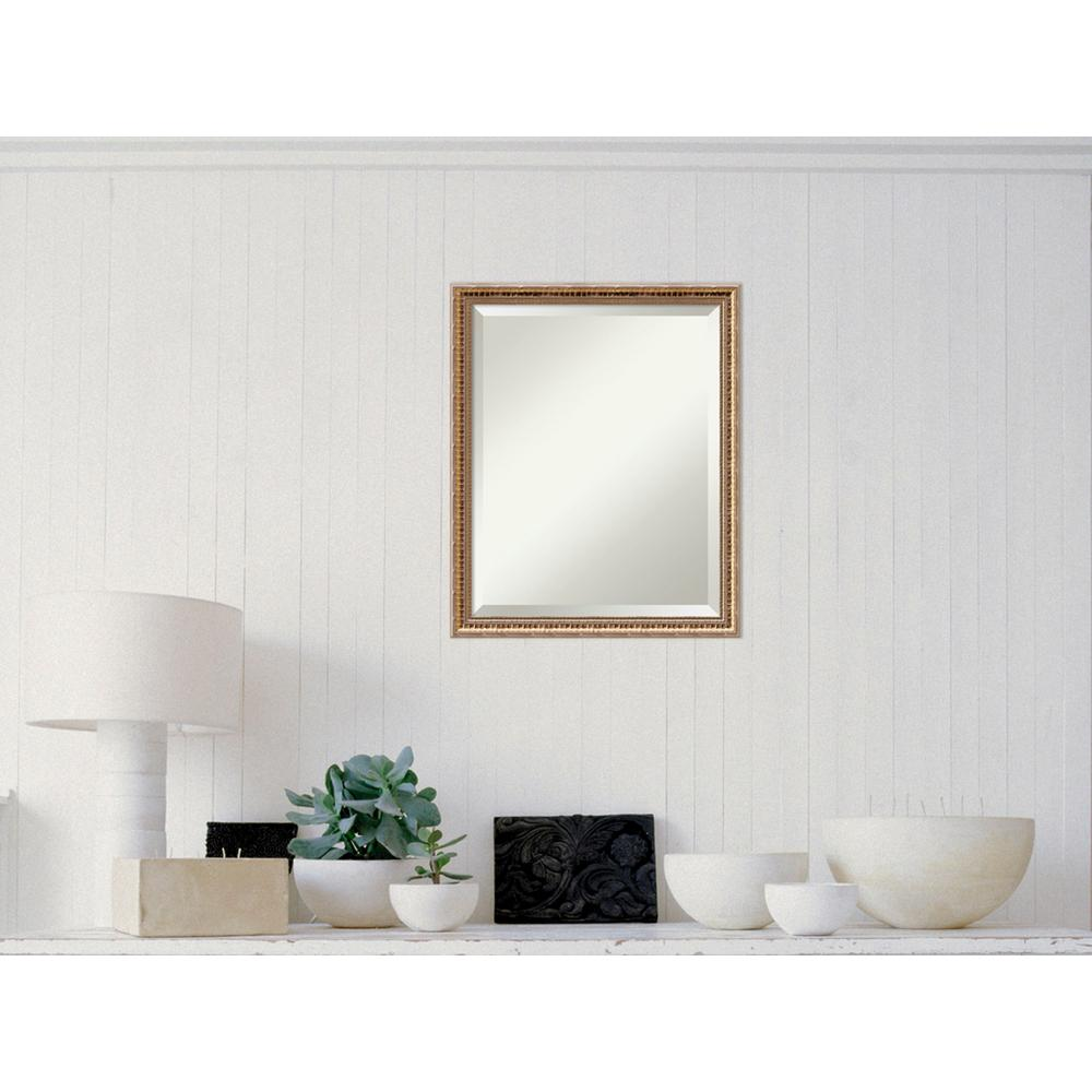 Amanti Art Fluted Champagne Wood 18 in. x 22 in. Traditio...