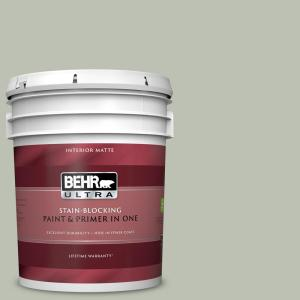 Behr Ultra 5 Gal Ppu11 11 Summer Green Matte Interior Paint And Primer In One 175005 The Home Depot