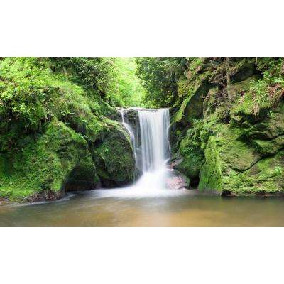 120 in. x 60 in. Window Well Scene - Waterfall Two