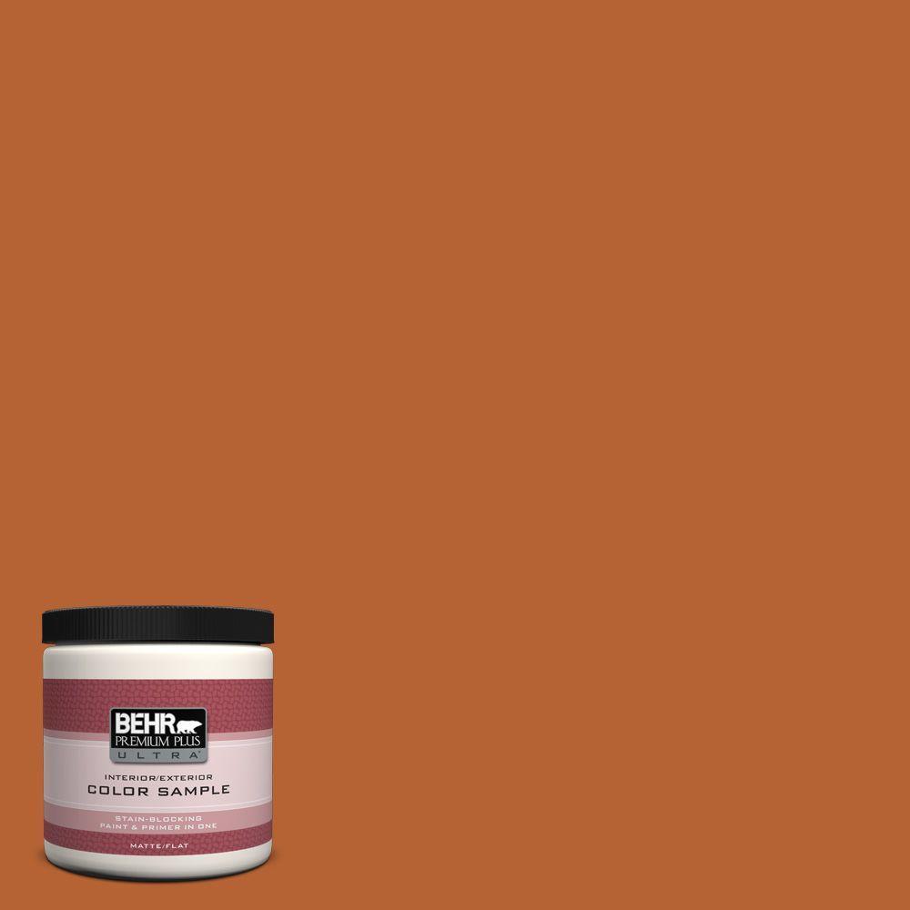 8 oz. #250D-7 Caramelized Orange Interior/Exterior Paint Sample