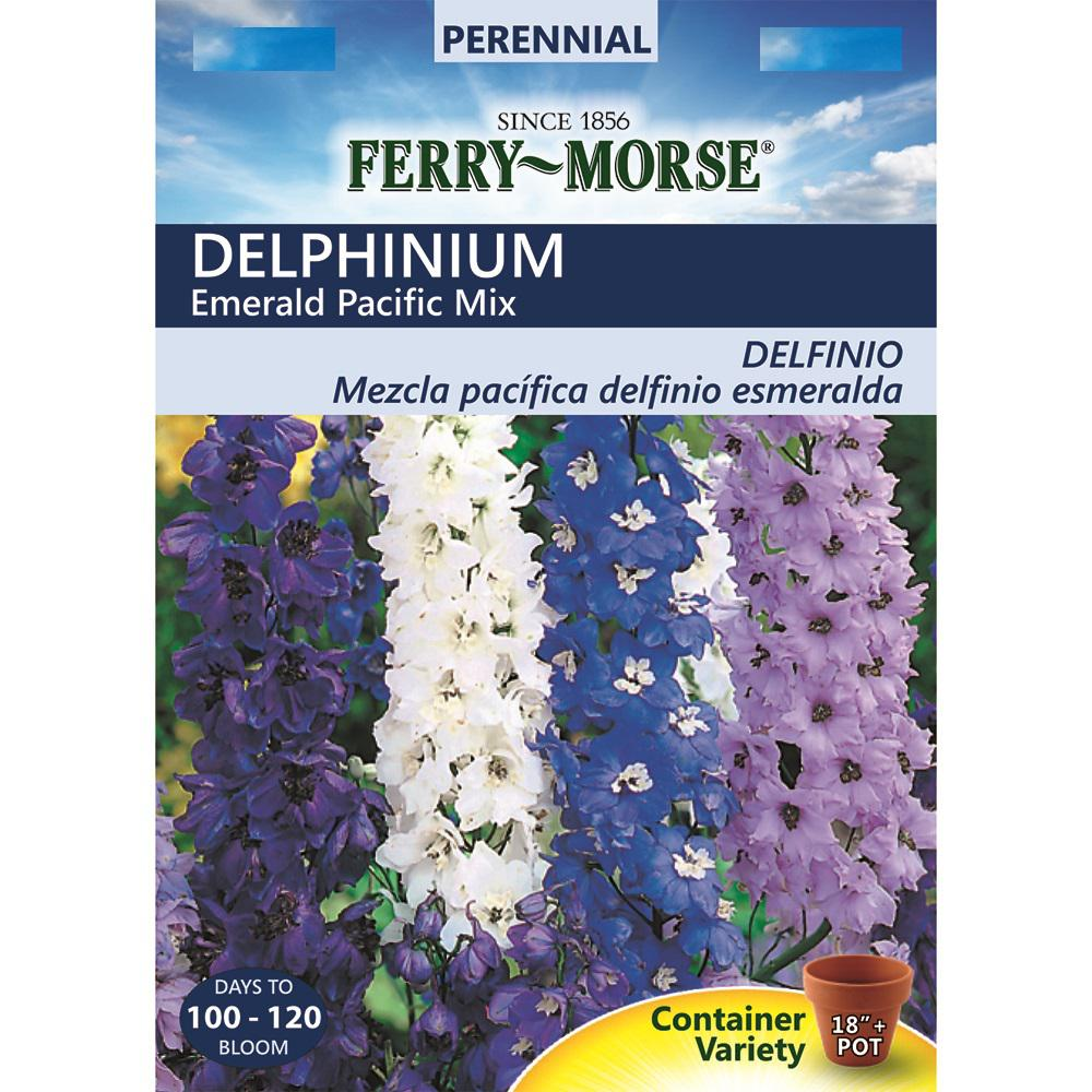 Ferry Morse Delphinium Emerald Pacific Mix Seed 9501 The Home Depot