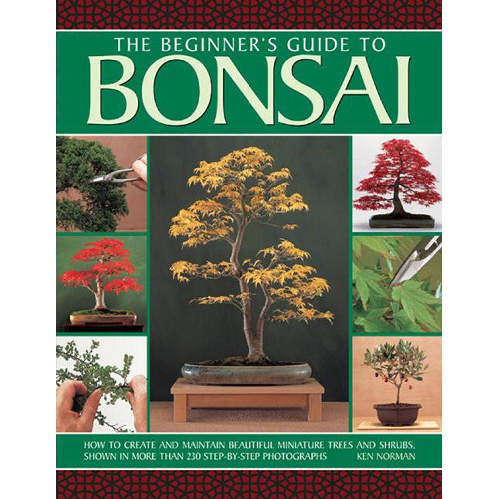 null The Beginner's Guide to Bonsai