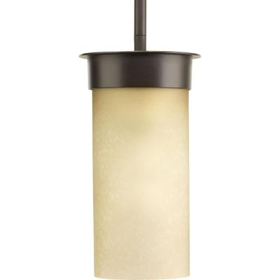 Hawthorne 1-Light Outdoor Antique Bronze Small Hanging Lantern