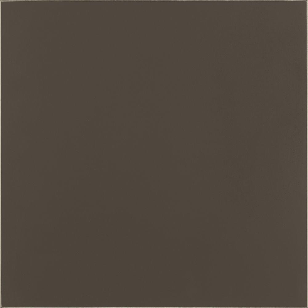 Thomasville Classic 14.5x14.5 in. Cabinet Door Sample in Blythe Maple Amberbark