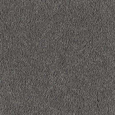San Rafael I (S) - Color Aspen Summit Texture 12 ft. Carpet