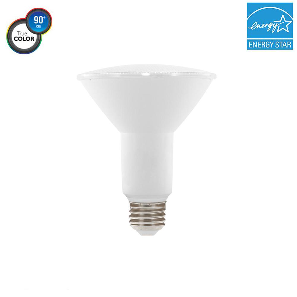 75W Equivalent PAR30 Dimmable LED Light Bulb, Bright White
