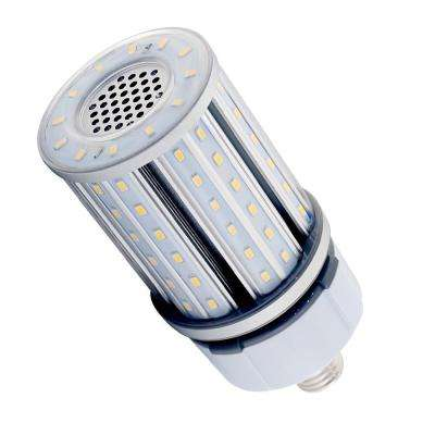 100W Equivalent Cool White Corn Cob Non-Dimmable LED Light Bulb