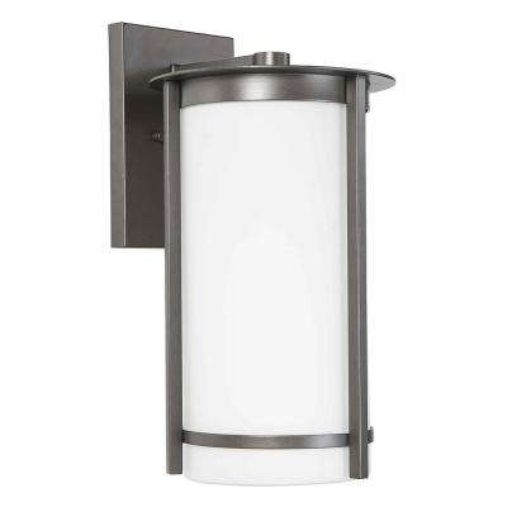 Truxton 1-Light Graphite Outdoor Wall Mount Cylinder Light