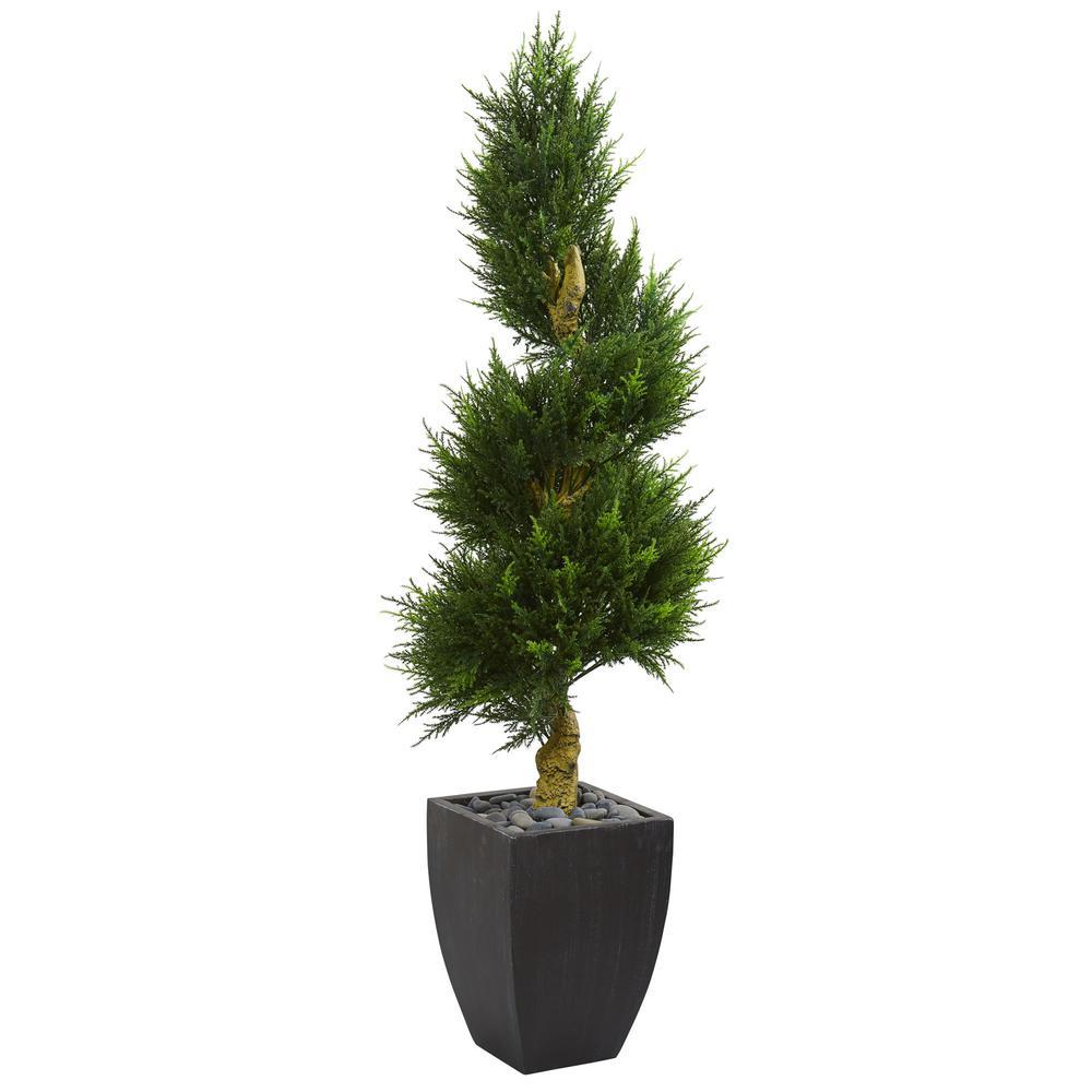 5.5 ft. High Indoor/Outdoor Cypress Spiral Artificial Tree in Black Wash Planter