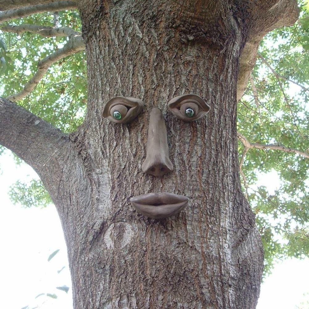 Simon Tree Face