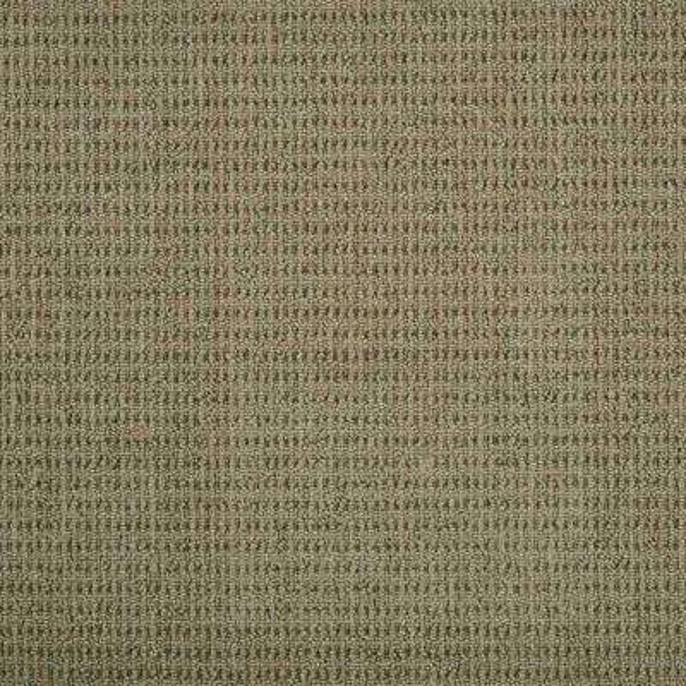 Carpet Sample - Terrain - Color Mushroom Loop 8 in. x 8 in.