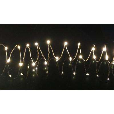 20-Light Warm White LED Battery Operated String Light with 3.4 ft. Silver Wire