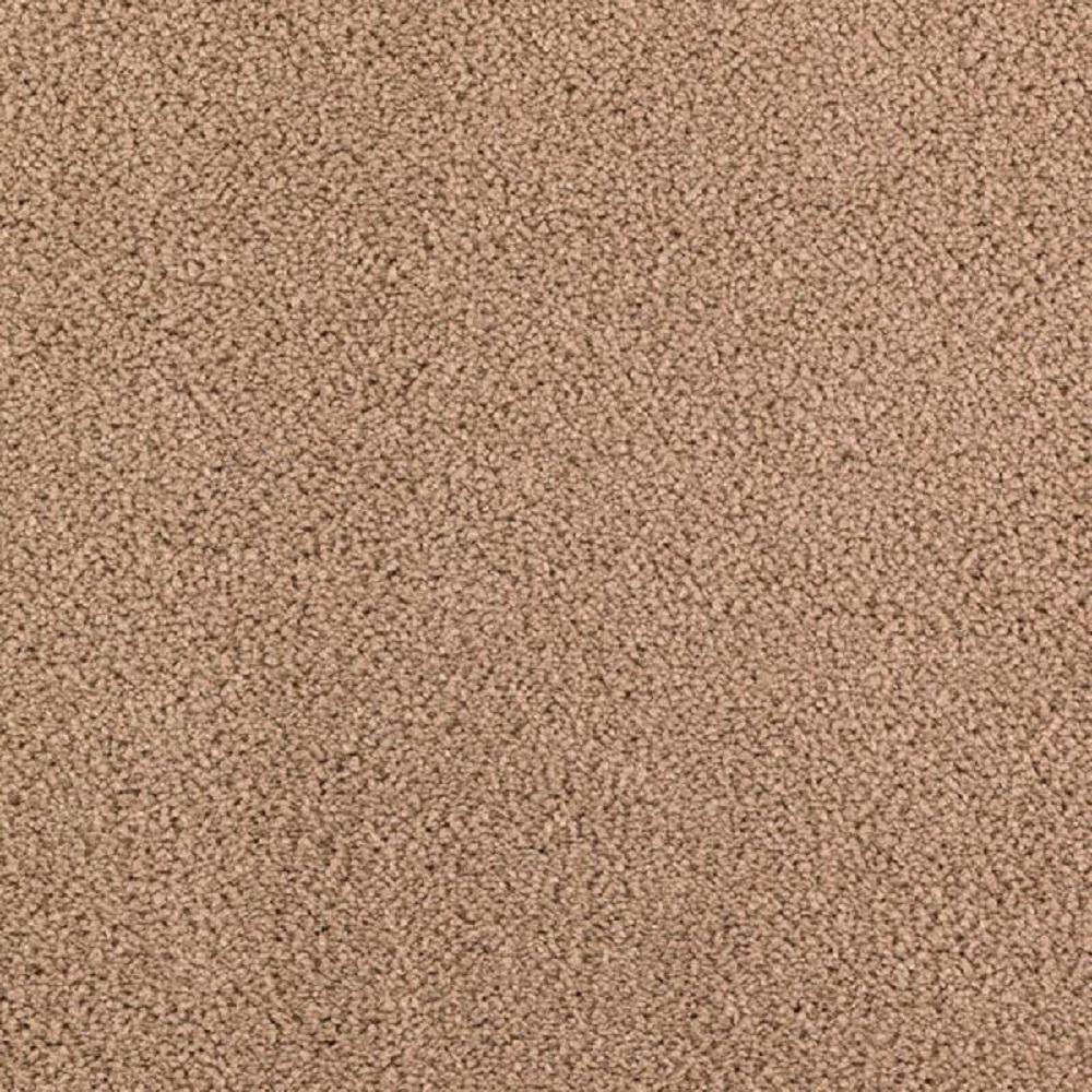 Petproof Collinger Ii Color Utopia Textured 12 Ft Carpet