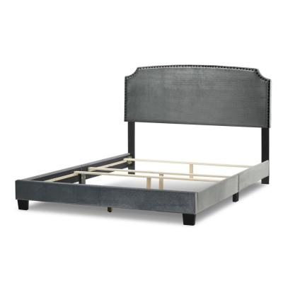 Arezo Silver Grey Velvet Queen Bed with Black Nail Head Trim