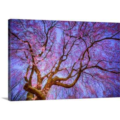 """""""Weeping Cherry"""" by Natalie Mikaels Canvas Wall Art"""