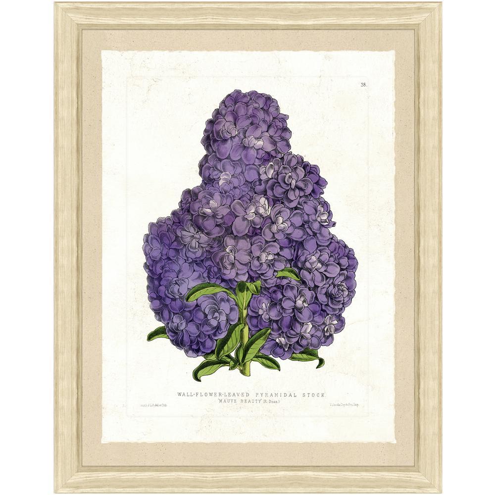 """Botanical III"" Framed Archival Paper Wall Art (22x28)"