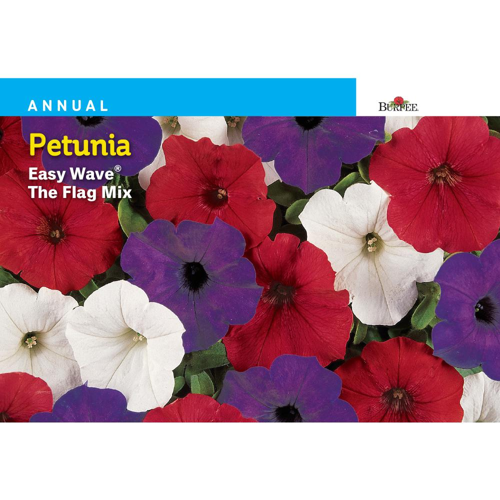 Burpee Petunia Easy Wave The Flag Mix Seed 45892 The Home Depot