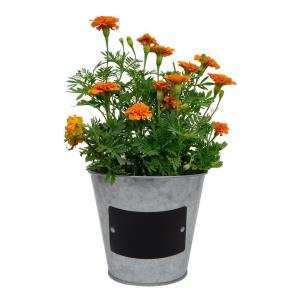 5.5 in. Small Metal Tin Planter with Chalkboard