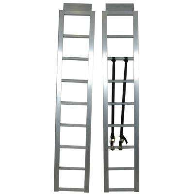 Ramp 13 in. x 69 in. Straight Pair