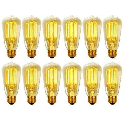 40W Vintage Edison S60 Squirrel Cage Incandescent Filament Light Bulb (12-Pack)
