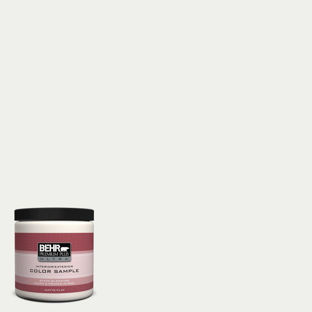 BEHR Premium Plus Ultra 8 oz. #780E-1 Billowy Down Interior/Exterior Paint Sample