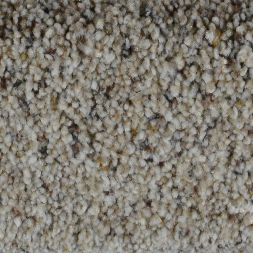 Carpet Sample - Galore I - Color West Palm Texture 8
