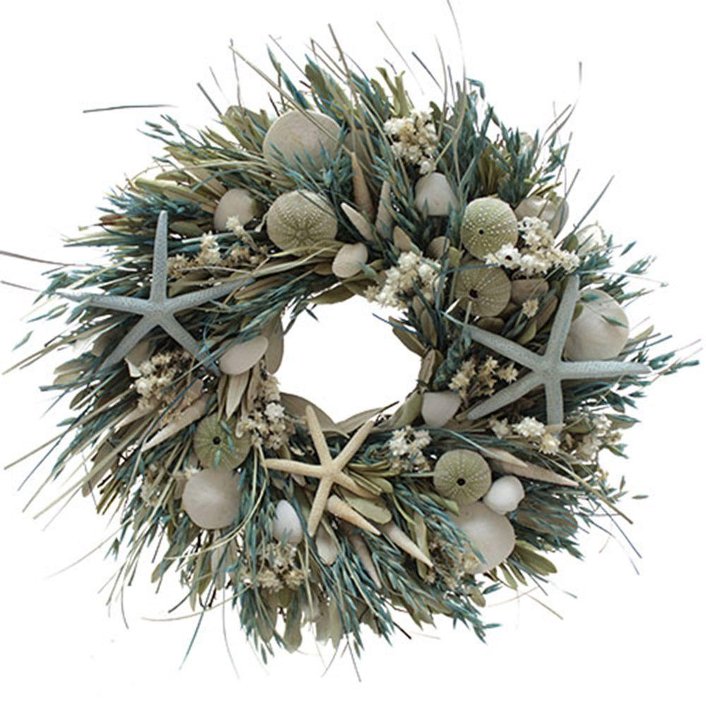 The Christmas Tree Company Shell We Swim 18 in. Seashell and Dried Floral Wreath