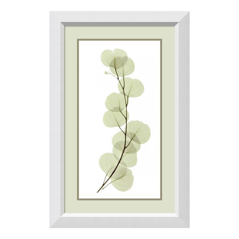 """""""Eucalyptus"""" by ACEE Framed Wall Art"""