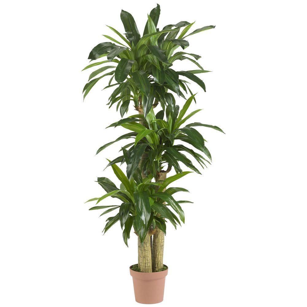 Real Touch 57 in. H Green Corn Stalk Dranaena Silk Plant