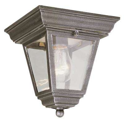 Robertson Rust 1-Light Outdoor Flush Mount Lantern
