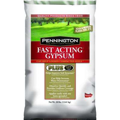 30 lb. Fast Acting Gypsum Plus AST Dry Lawn Fertilizer