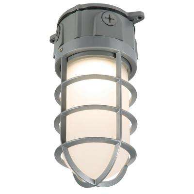 Gray Outdoor Integrated LED Vapor Tight Wall and Ceiling Flushmount Security Area Light