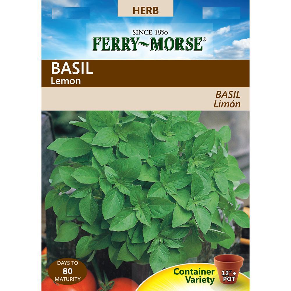 Basil Lemon Seed
