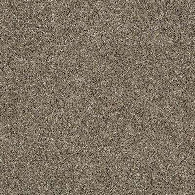 Pagliuca I - Color Mineral Brown Texture 12 ft. Carpet