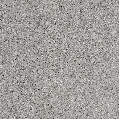 Coral Reef I - Color Old Pewter Texture 12 ft. Carpet
