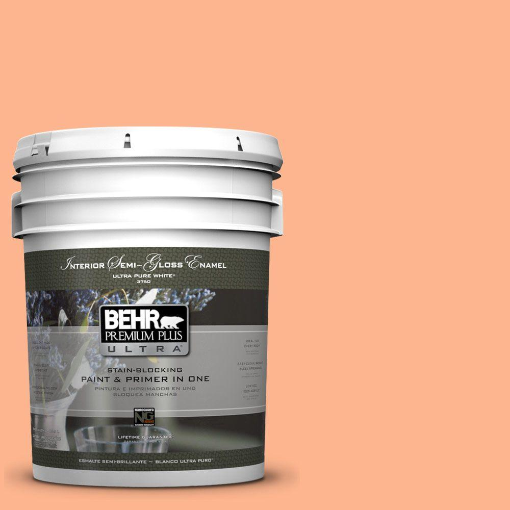 5-gal. #230B-4 Desert Sunrise Semi-Gloss Enamel Interior Paint