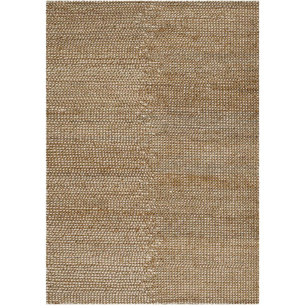 Chandra Natural Ivory/Brown 9 ft. x 13 ft. Indoor Area Rug