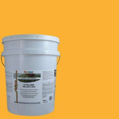 5 gal. Yellow Stripe Bulk Athletic Field Marking Paint