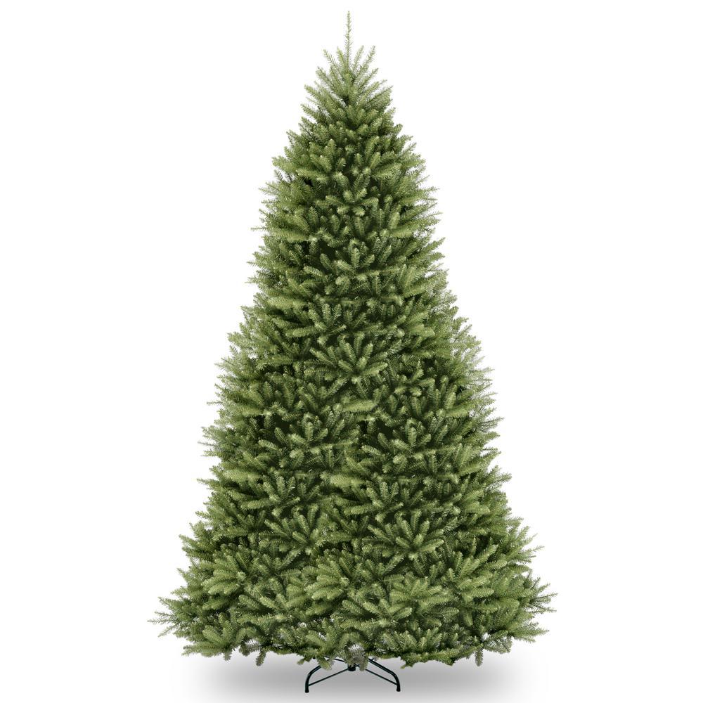 10 ft. Dunhill Fir Tree