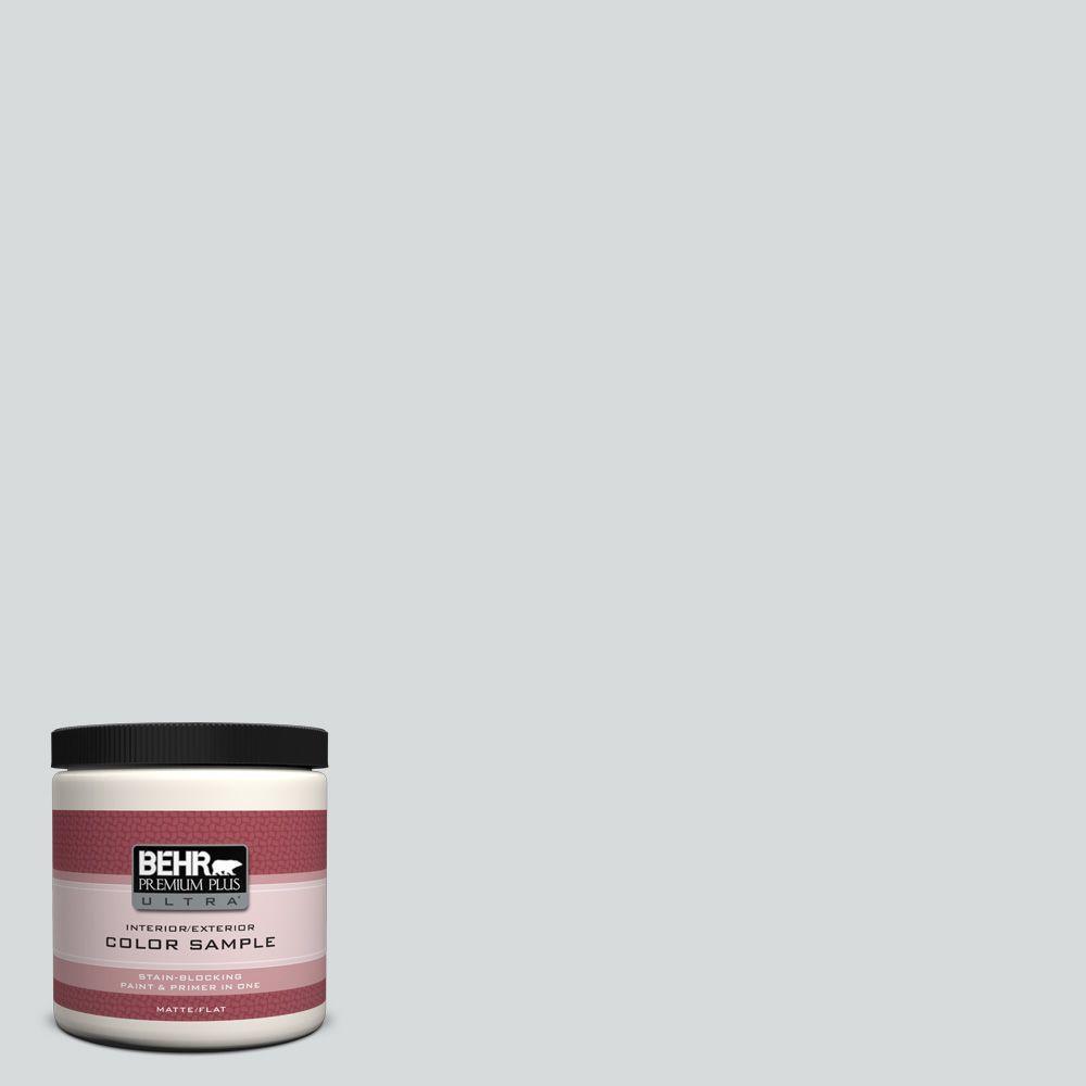 BEHR Premium Plus Ultra 8 oz. #ECC-33-2 Silver Sands Interior/Exterior Paint Sample