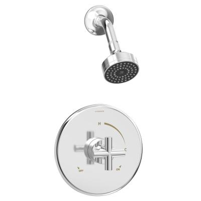 Dia 1-Spray 1-Handle Shower Trim Kit in Polished Chrome (Valve Not Included)