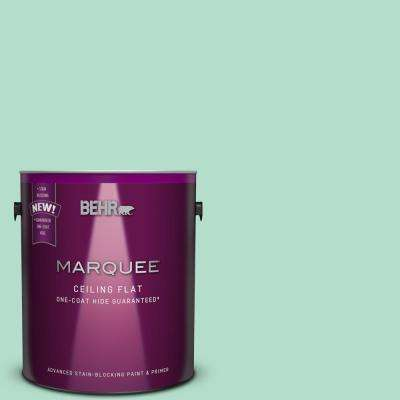 1 gal. #MQ4-18 Tinted to Free Spirit One-Coat Hide Flat Interior Ceiling Paint and Primer in One