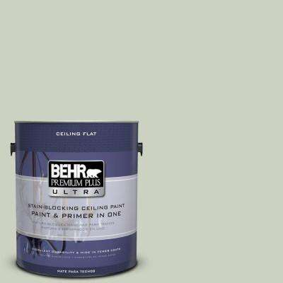 1 gal. #PPU10-11 Ceiling Tinted to Sliced Cucumber Flat Interior Paint and Primer in One