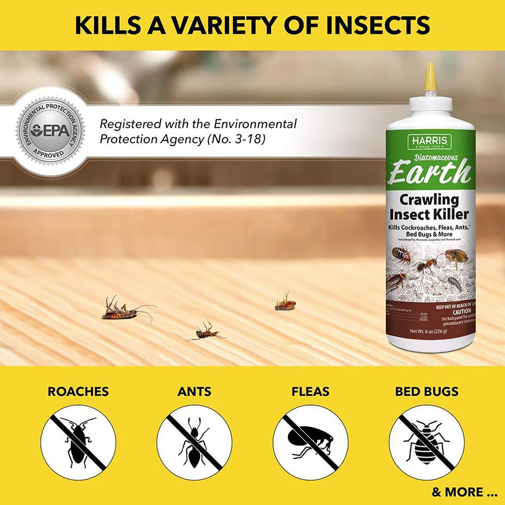 Harris 8 Oz Diatomaceous Earth Crawling Insect Killer Decrawl 8 The Home Depot