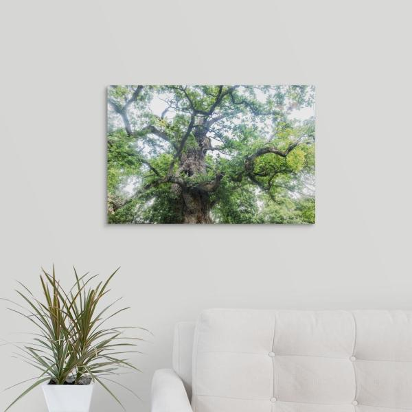 Greatcanvas The Old Oak By Philippe Manguin Canvas