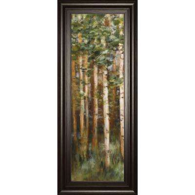 "18 in. x 42 in. ""Aspen Beauty 2"" by Scott Lee Framed Printed Wall Art"