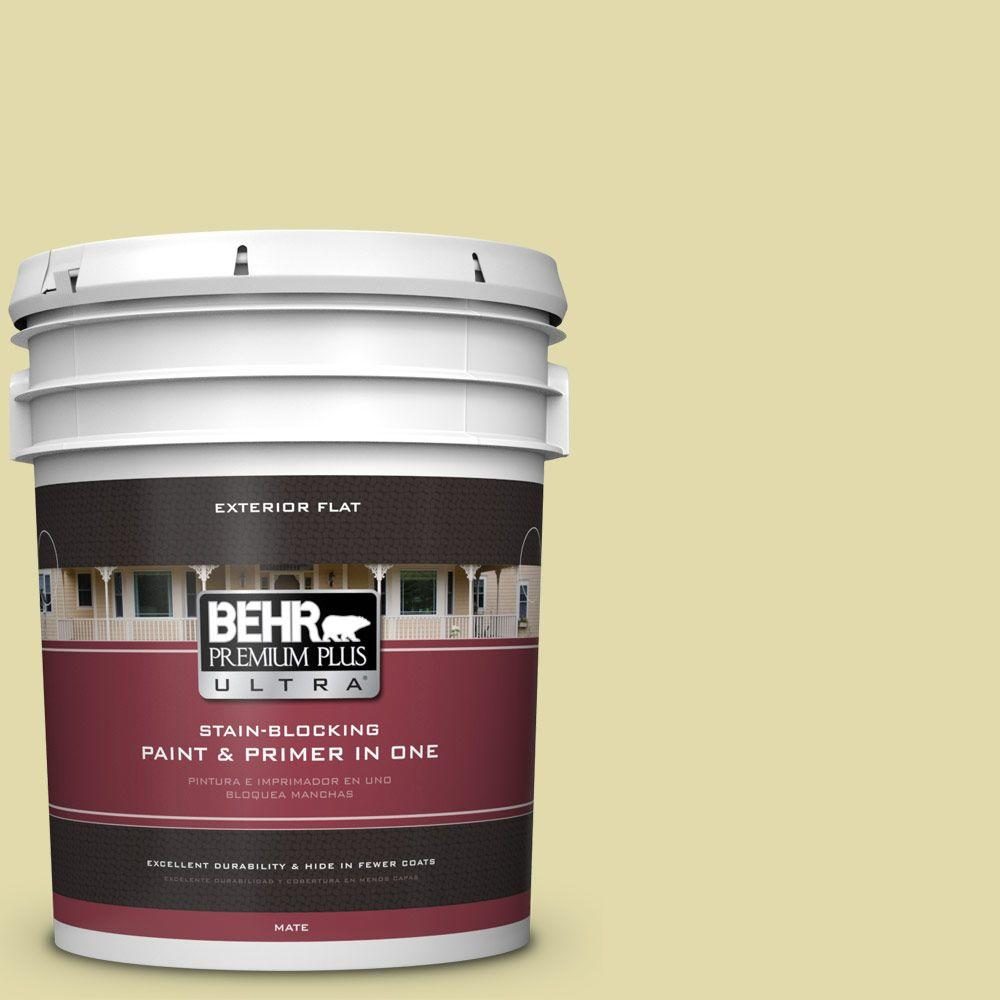 BEHR Premium Plus Ultra 5-gal. #400C-3 Dried Palm Flat Exterior Paint
