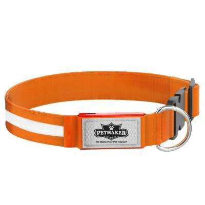 Small Orange LED Dog Collar